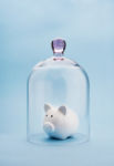 Piggy Bank Under Glass - Third-Party Discretionary Trust
